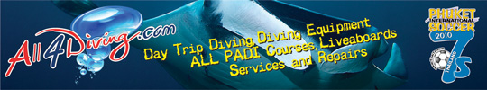 Banner All4Diving